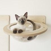고양이 벽걸이 투명해먹