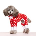 RED POLKA DOT FLEECE ALL IN ONE