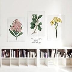 패브릭 천 포스터 F012 식물 보타니컬 아트 플라워A