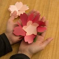 벚꽃카드 Hot Pink
