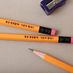 [주문제작]네임연필2B 12자루 스테들러