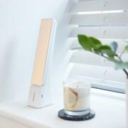 프로 LED 스탠드 (밝기조절/USB전원/충전식)_(1340105)