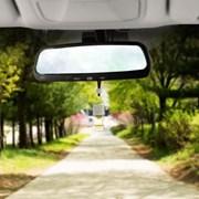 [이탈리아 컨센서스]컨센서스 차량용 방향제 그린애플