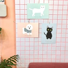 두둠칫 포스터 (검은고양이)