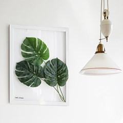 보타니컬 투명액자-몬스테라 A3 (식물액자)