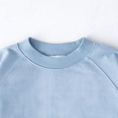 sweatshirt, badger_(802680)