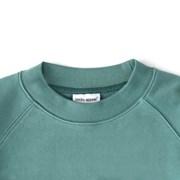 sweatshirt, fox_(802682)