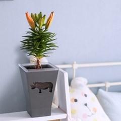 [모씨엔] 인테리어 화분 WILD - 코뿔소