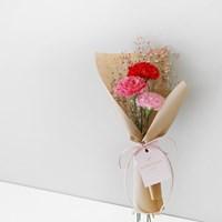 카네이션 & 안개꽃 큐티 꽃다발
