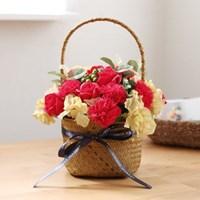 클래식 비누카네이션꽃바구니 (중) [돈바구니DIY]_(483796)