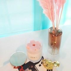핑크팜파스+골드화병SET