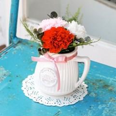 ELODIE CARNATION_프리저브드플라워 카네이션(시들지 않는 꽃)