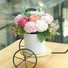 그라치아 카네이션 로즈 화분 핑크
