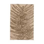 [다니카]티타올 가을나무 2종세트_(12442386)