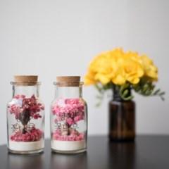 바른향기 향기꽃나무 S