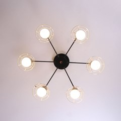 boaz 눈꽃6등 방등 거실등 직부등 LED 인테리어조명