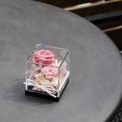 프리저브드 장미 큐브