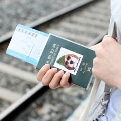 Clear passport case