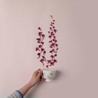 리로라 순수 맨드라미 꽃차