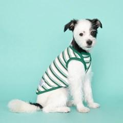 [플로트] 시그니쳐 강아지 민소매 티셔츠 클레버 스트라이프-그린
