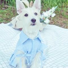 러브핫핏 x 무드므아 Cutted cotton dress(pet)