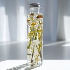 하바리움(herbarium) - 라운드보틀 - 암모비움/레피디움
