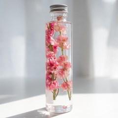 하바리움(herbarium) - 라운드보틀 - 핑크락스퍼