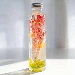 하바리움(herbarium) - 라운드보틀 - 오렌지브룸브룸