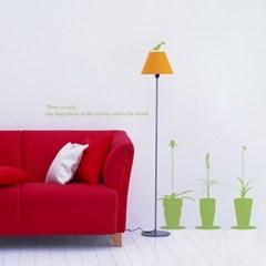 VARIETY PLANTS 버라이어티 플랜츠