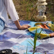 Picnic Mat - Checky Flower Blue
