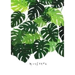 몬스테라숲