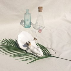 Triceratops skull jewelry stand