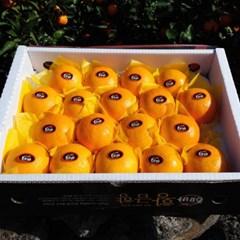 황금향 3kg(15-22수)_선물용 소과/생기가득 비타민C!!