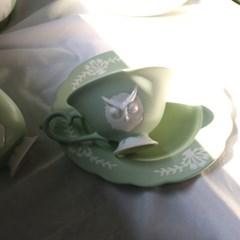 카페룸넘버1508 부엉이 홍찻잔세트 green pastel