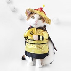 Miyopet 황제옷 고양이옷 강아지옷 코스튬 할로윈
