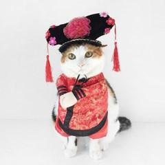 Miyopet 황후옷 고양이옷 강아지옷 코스튬 할로윈