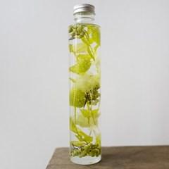 하바리움(herbarium) - 라운드보틀 L - 라임포플란트
