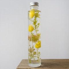 하바리움(herbarium) - 라운드보틀 L - 옐로우포플란트