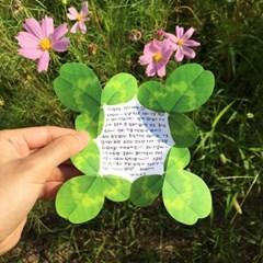 네잎 클로버 카드 Four leaf clover Card