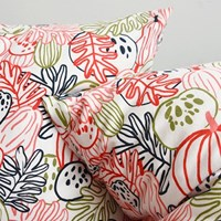 30 vegetables cushion