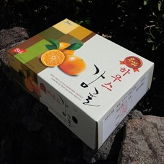 효돈 하우스감귤 3kg(31~43과/S,M사이즈)_선물용/생기가득 산지직송
