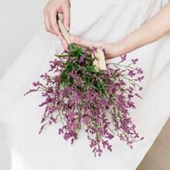 내추럴 와일드 들꽃부케 [2color]_(515900)