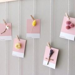 핑크 드라이플라워 카드(5p) - 랜덤