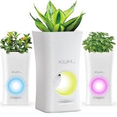 KIUM LED무드등 천연가습기 화분 겸용