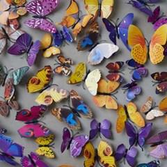 나비 장식 스티커 (12ea 1set)