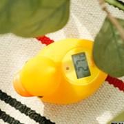 드레텍 오리 탕온계 목욕물 온도측정