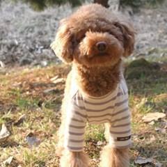마이하트 스트라이프 강아지 티셔츠_퍼플