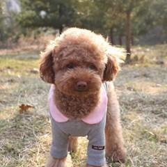 면 솜사탕 강아지 티셔츠_핑크,그레이