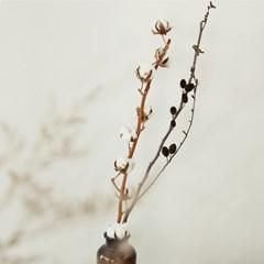몽글몽글, 포근한 목화