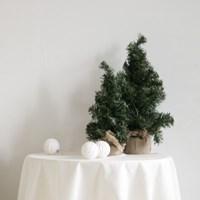 베이직 크리스마스 트리(중)(크리스마스 장식/소품)_(1042861)